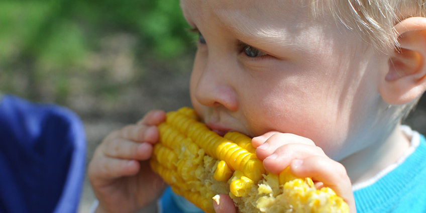 Simplifying the diet question: What should my child eat?